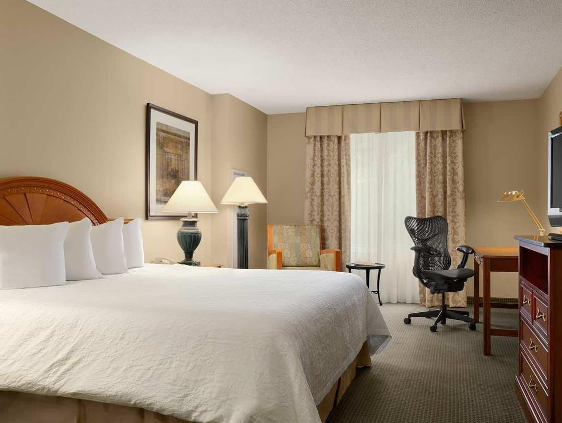 Attractive 1 King Mobility Hearing Accessible   Guestroom Hilton Garden Inn Saratoga  Springs Design