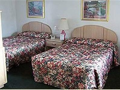 Habitació Doble amb 2 llits dobles (Double Room with Two Double Beds)