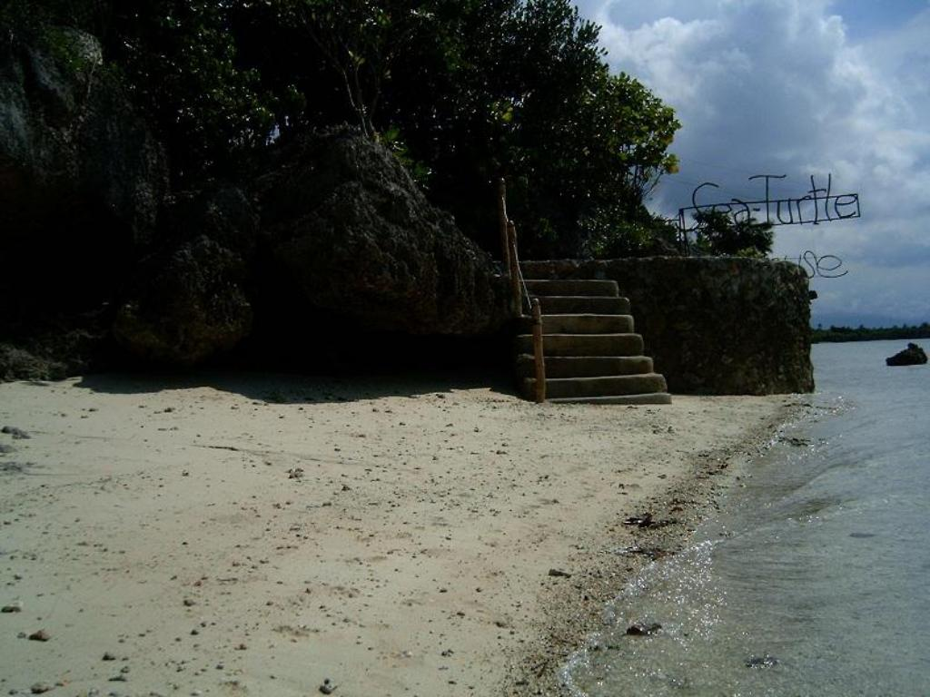 rand Sea Turtle House