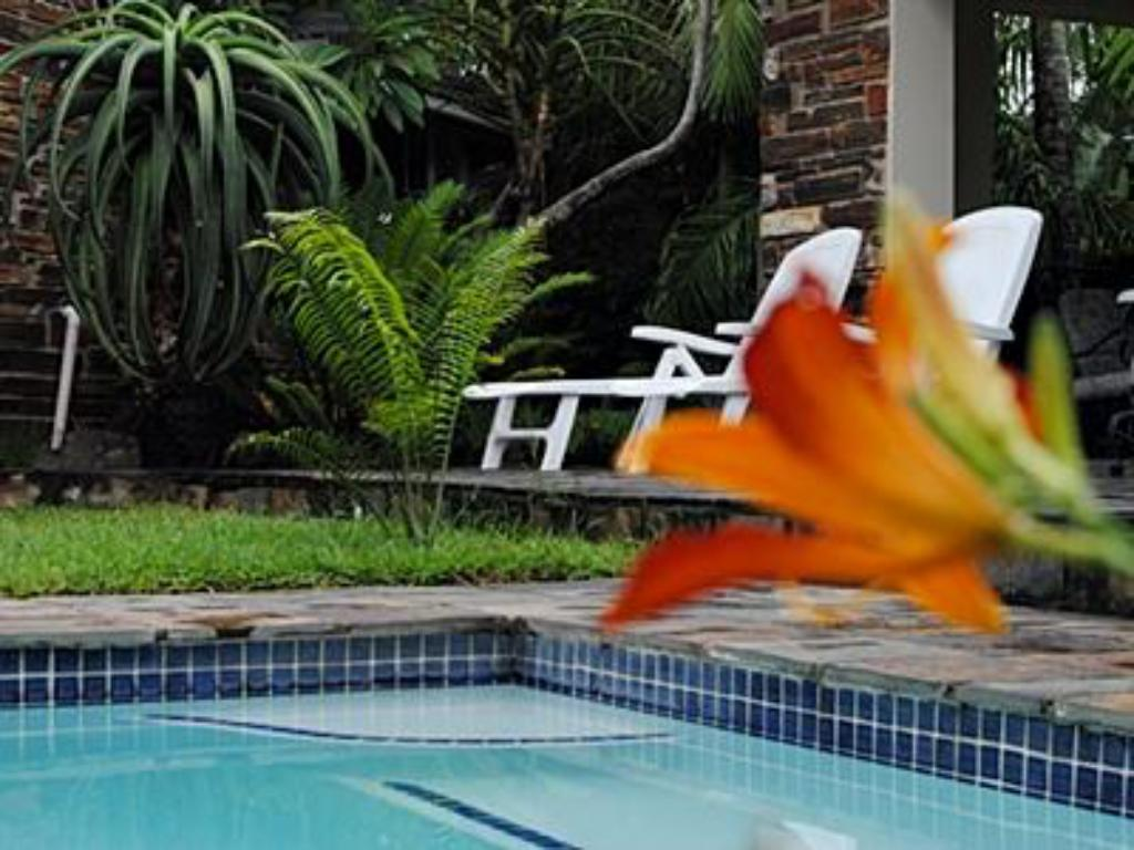 Swimming pool [outdoor] Buya Futhi B and B