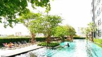 Sukhumvit New Room BTS Bangna Pool view