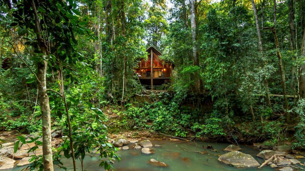 Exterior view The Canopy Rainforest Treehouses