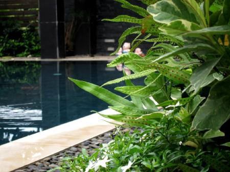 Swimming pool Baanwandavee Hua Hin