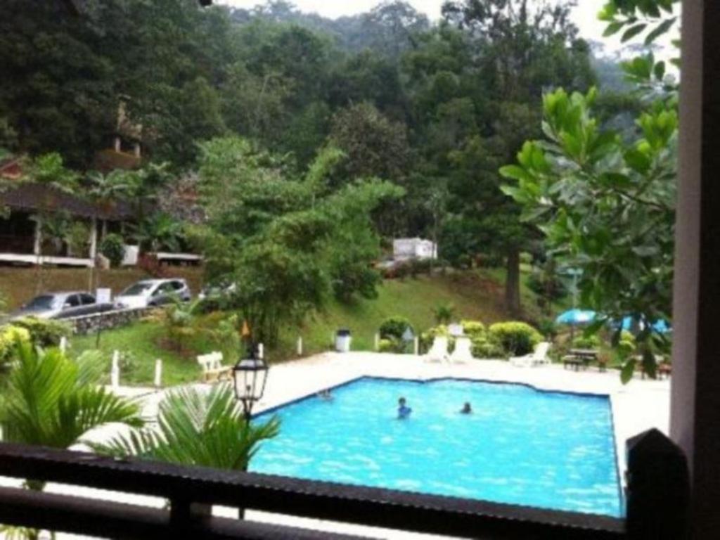 Kota tinggi waterfalls resort in malaysia room deals - Swimming pool specialist malaysia ...