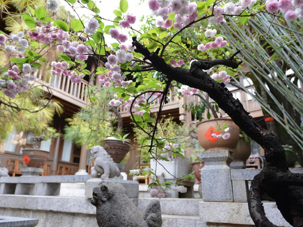 More about Zen Garden Hotel Wuyi Yard