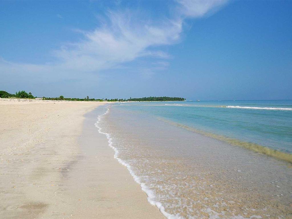 Maalu Maalu Resort Spas Pasikuda Booking Deals Photos Reviews