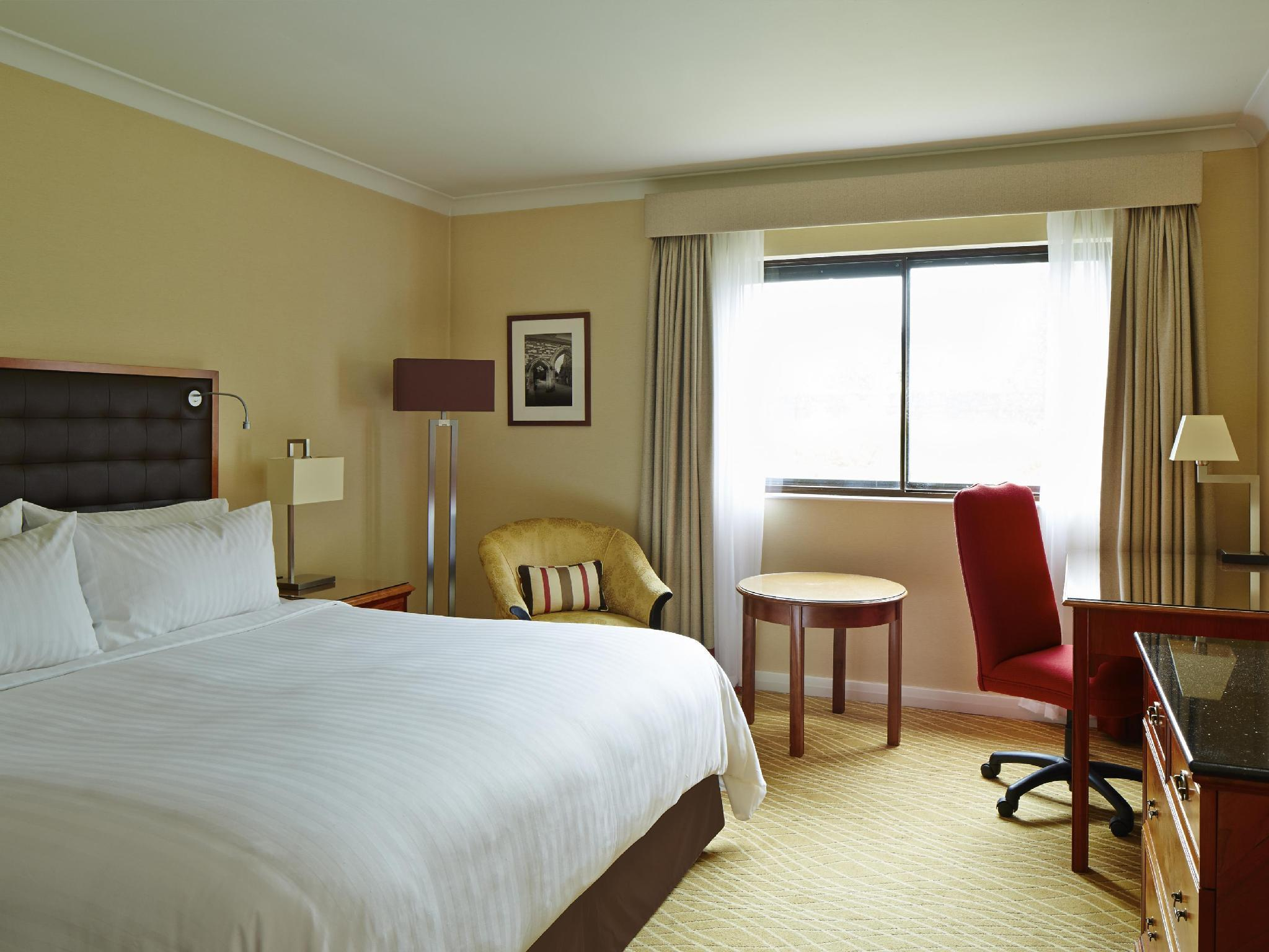 Superior Room, Larger Guest room, 1 King