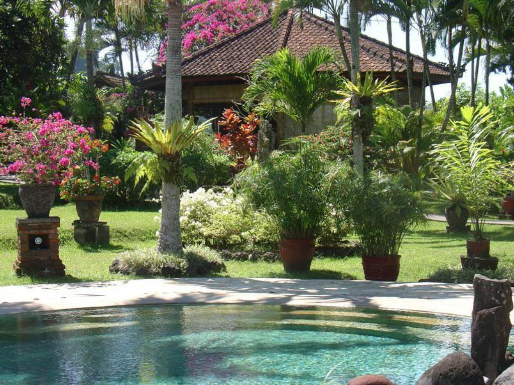 Swimming pool [outdoor] Cabe Bali Bungalows