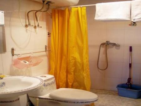 Bathroom Sun Service Apartment Bird Nest