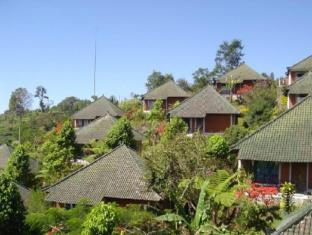 Care Resort Bali