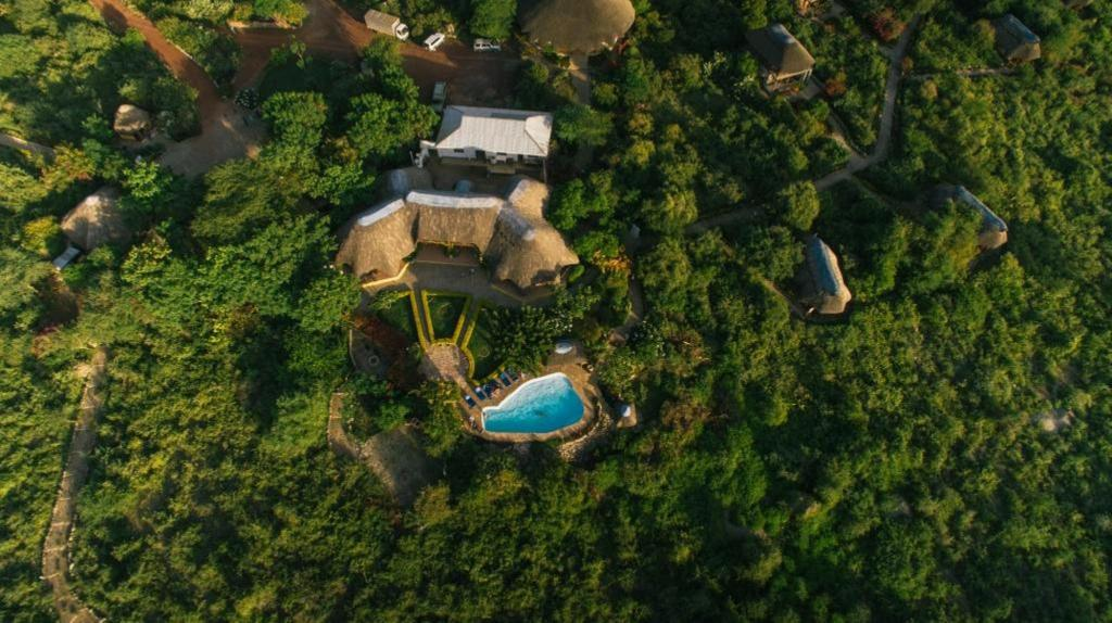 Manyara Wildlife Safari Camp Hotel