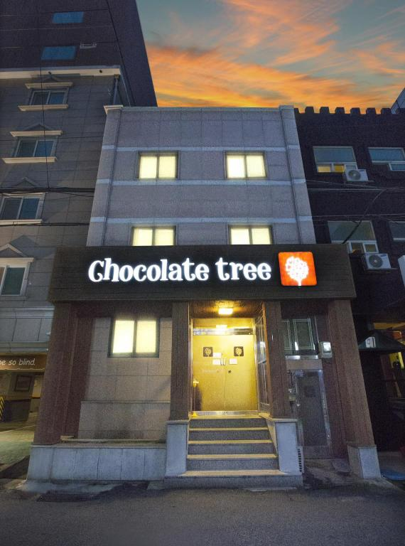 More about Chocolate Tree Hostel