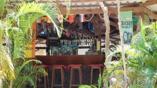 Jungle Bar & Bungalow