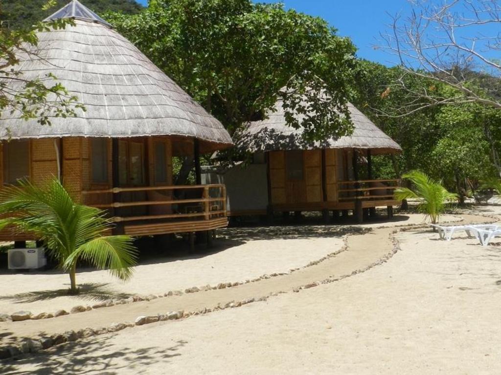 Cashew Grove Beach Resort Hotel - room photo 11013618
