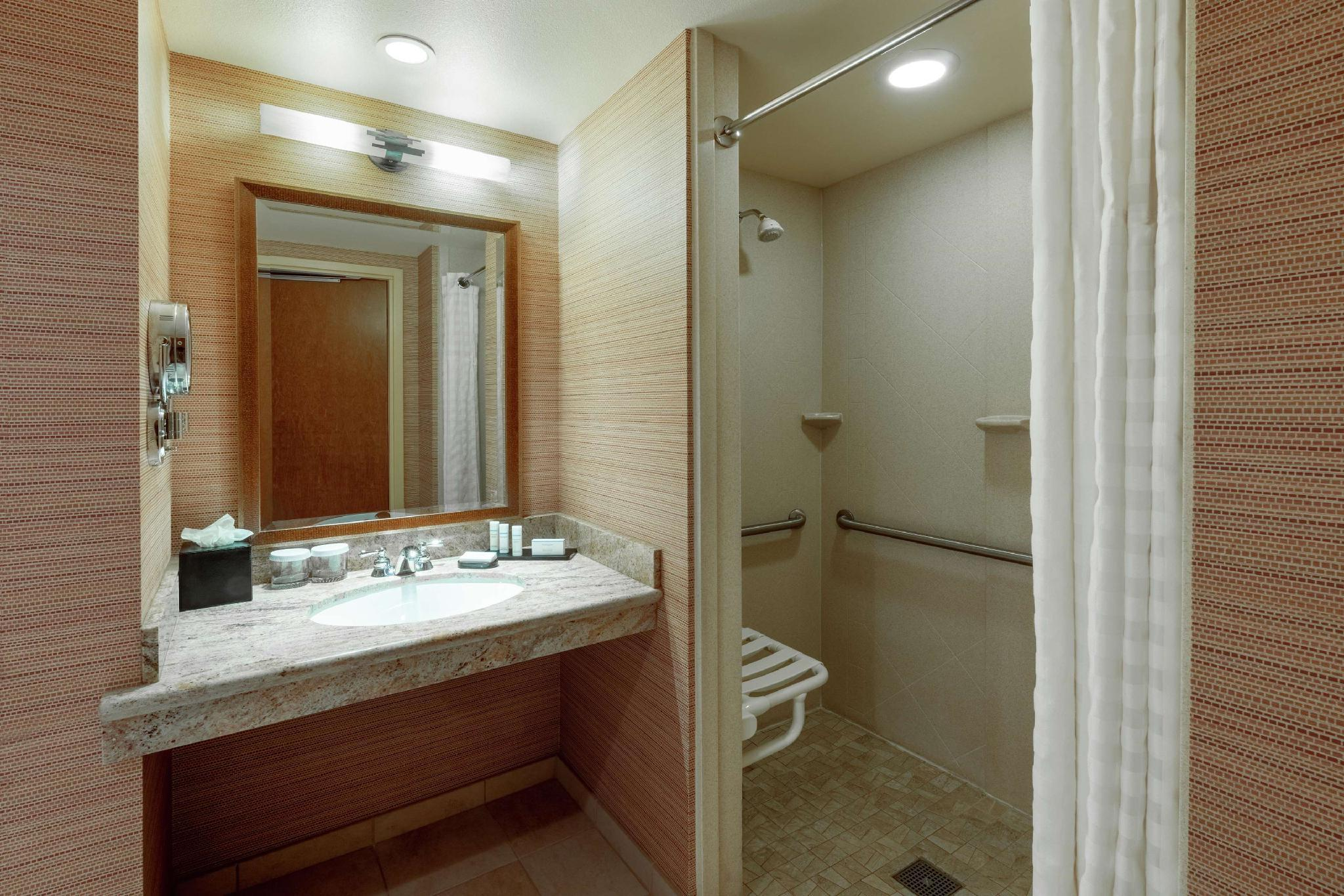 2 Queens Suite Mobility/Hearing Accessible Roll In Shower