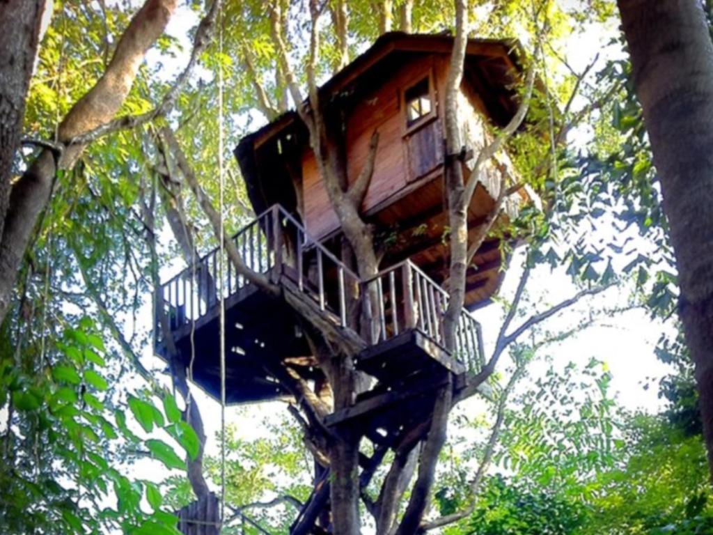 Rabeang Pasak Tree House Resort In Chiang Mai Room Deals Photos