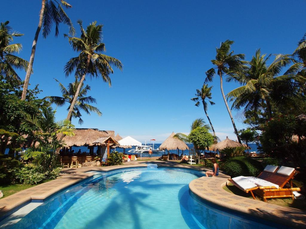 Pura vida beach and dive resort dauin in dumaguete room - Hotels in dumaguete with swimming pool ...