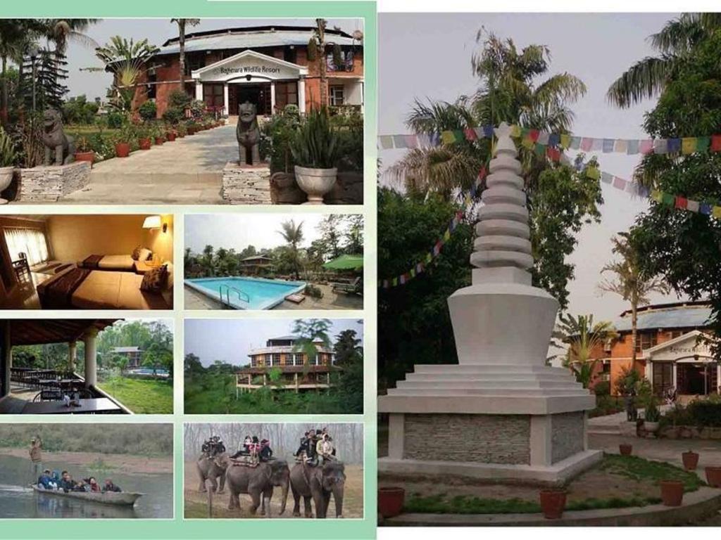 Construire Un Pool House baghmara wildlife resort in chitwan - room deals, photos