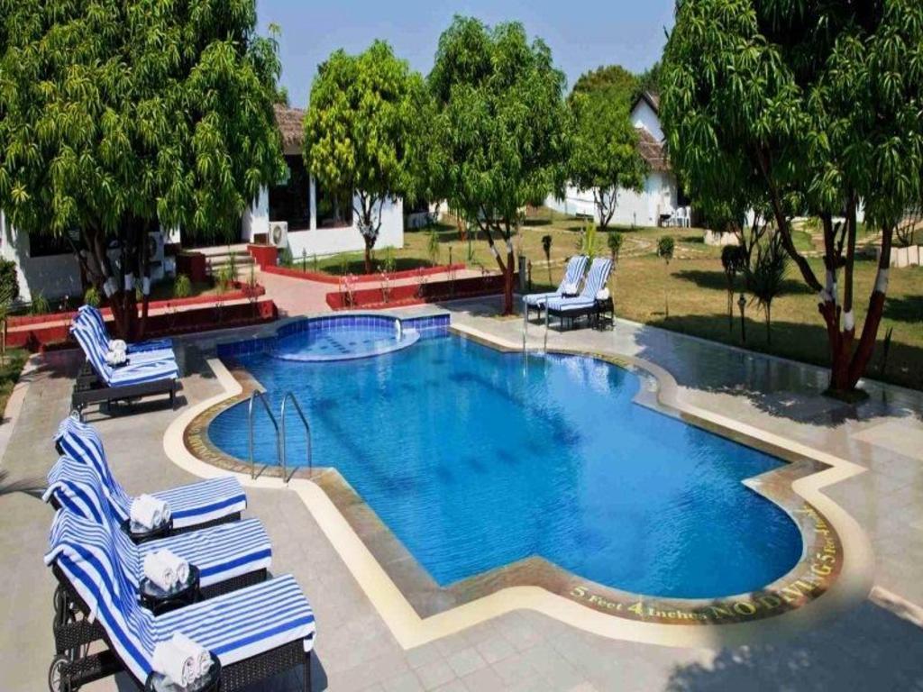 Club mahindra gir in sasan gir room deals photos reviews - Club mahindra kandaghat swimming pool ...
