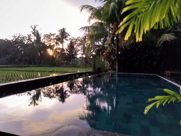 ubud lestari bungalows bali room deals reviews photos indonesia rh agoda com