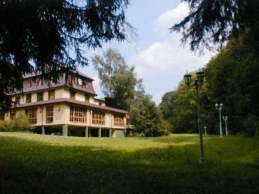 Singles schriesheim