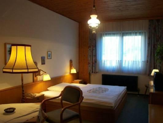 Cameră dublă standard (2 adulţi) (Standard Double Room (2 Adults))