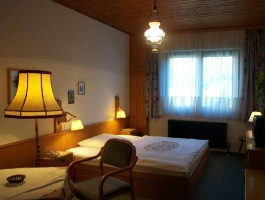 Cameră dublă standard (1 adult) (Standard Double Room (1 Adult))
