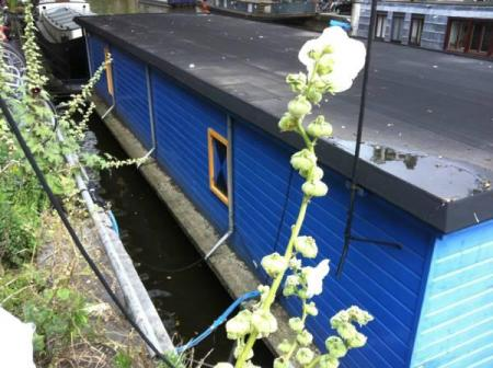 Exterior view The Blue Houseboat