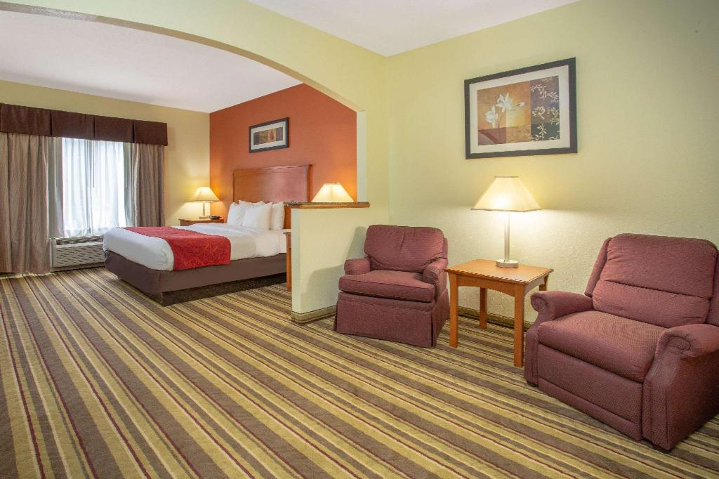 1 King Bed Accessible Suite Tub Non-Smoking - Guestroom