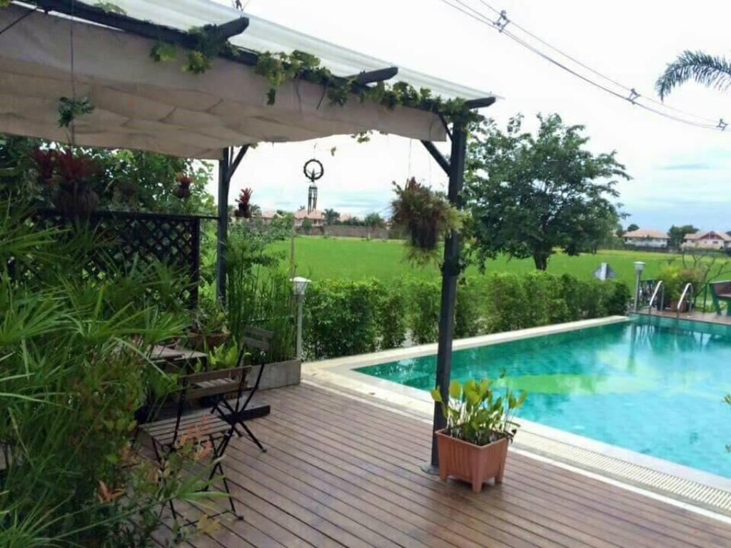 Swimming pool [outdoor] Tree Retro (Superior room)