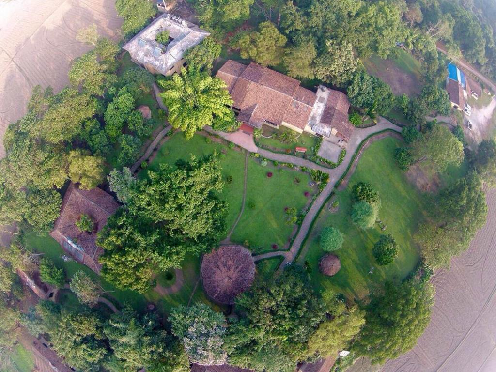 Exterior view Green Mansions Jungle Resort