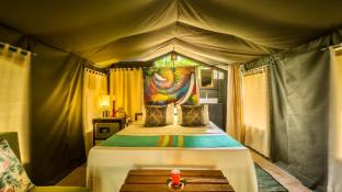 Mahoora Tented Safari Camp - Wilpattu
