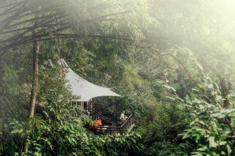 four seasons tented camp golden triangle in chiang saen room deals rh agoda com