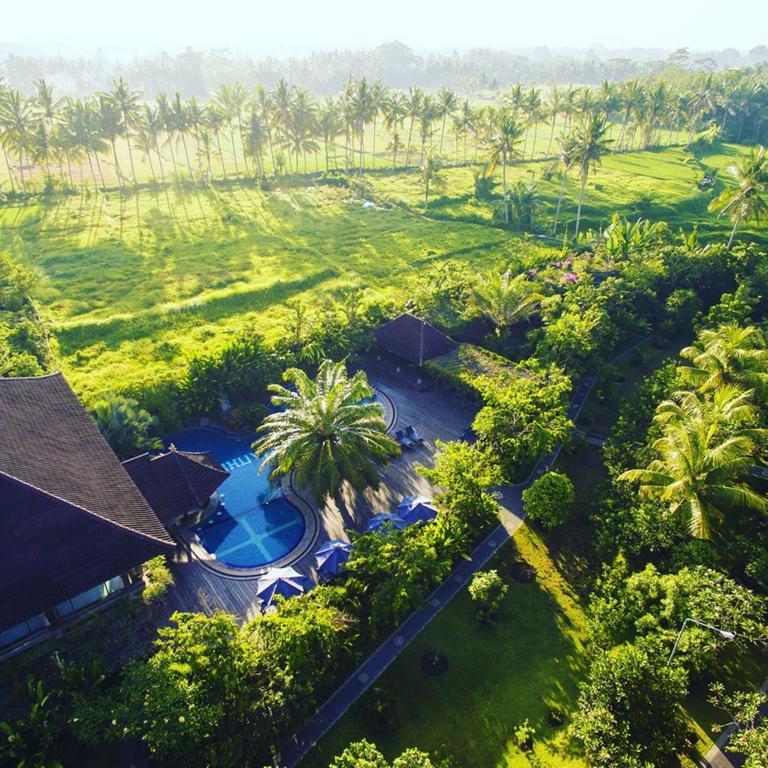 Best Hotels In Bali Tripadvisor: Best Price On Bhuwana Ubud Hotel In Bali + Reviews
