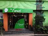 The Forest Hostel