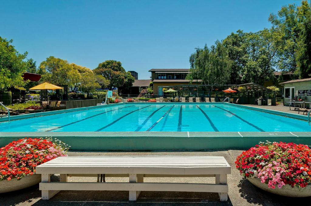 Swimming pool [outdoor] Best Western Corte Madera Inn