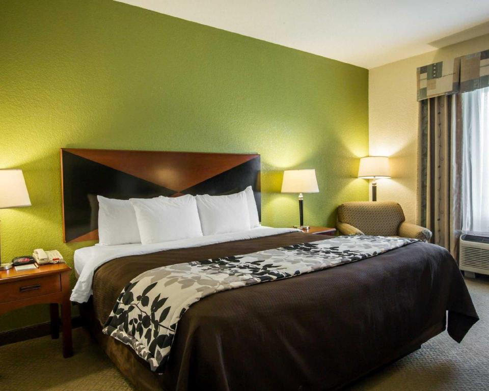 Standard with 1 King Bed - Guestroom Sleep Inn and Suites Montgomery