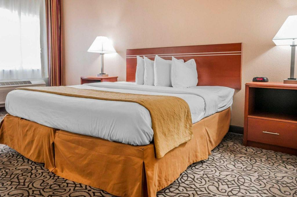 Standard with 1 King Bed - Guestroom Quality Inn and Suites Pueblo