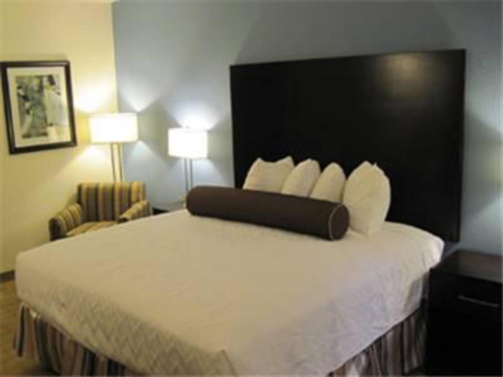 Habitació King - No Fumadors Best Western Plus Lytle Inn and Suites