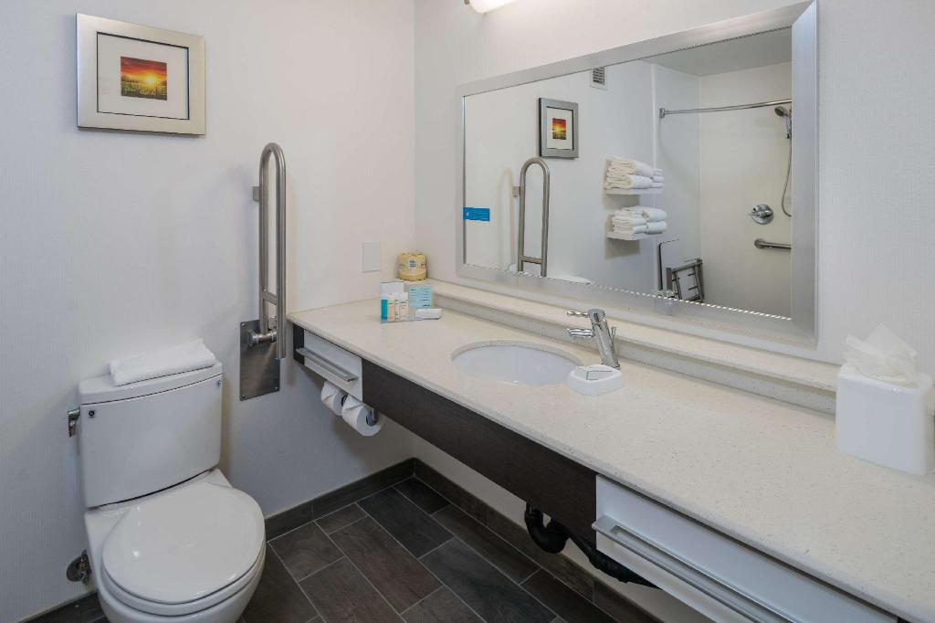 1 King Accessible Roll In Shower Non-Smoking - Guestroom
