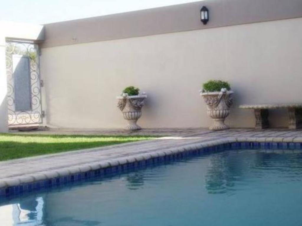 Swimming pool Stone Olive