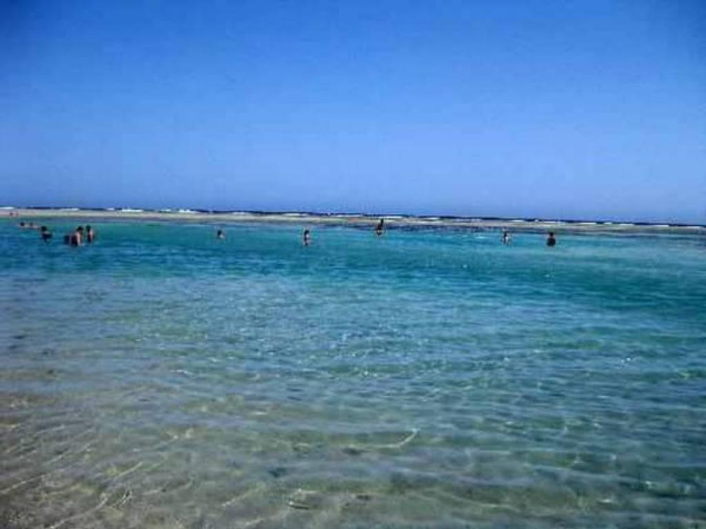 playa Elphistone Resort Marsa Alam
