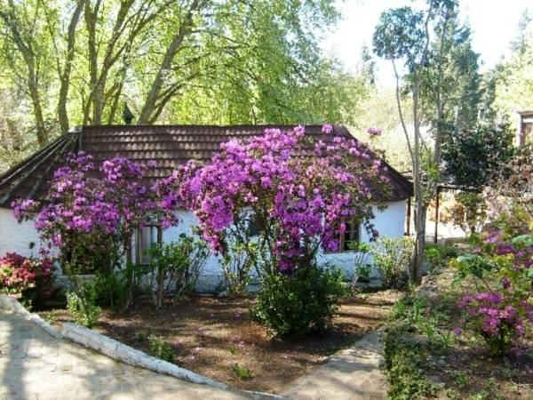 Casa Rural (2 adultos) (Cottage (2 Adults))