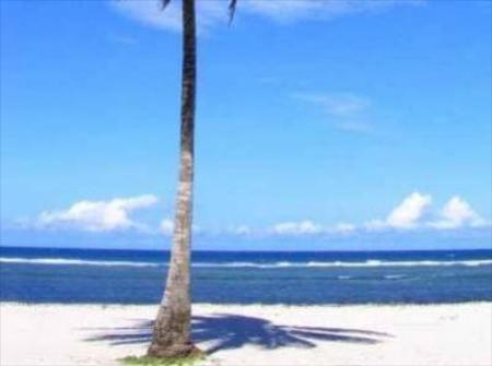 pantai Diani Star Beds