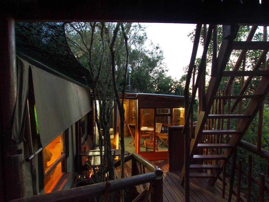 מרפסת Teniqua Treetops Tented Treehouse Resort