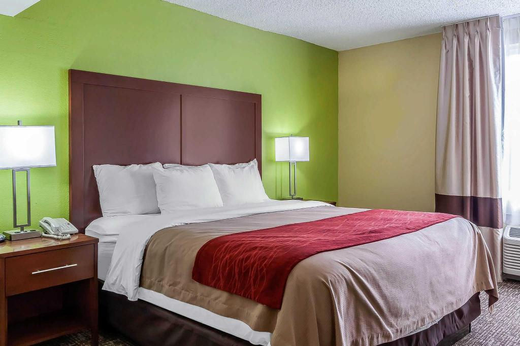 1 King Bed Nonsmoking - Guestroom Comfort Inn North