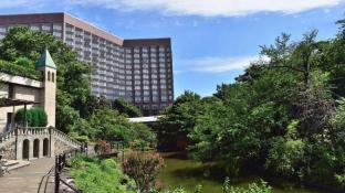 10 Best Tokyo Hotels: HD Photos + Reviews of Hotels in
