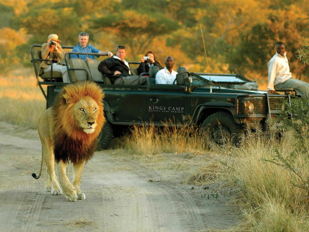 Recreational facilities Kings Camp Private Game Reserve