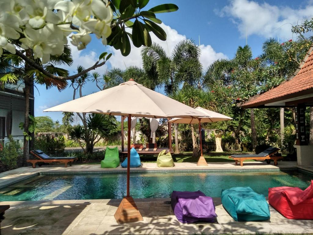 More about Premier Surf Camp Bali