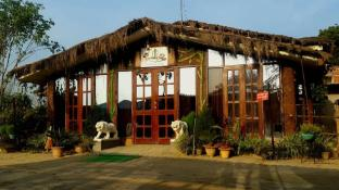 Dudhwa jungle lore Resort